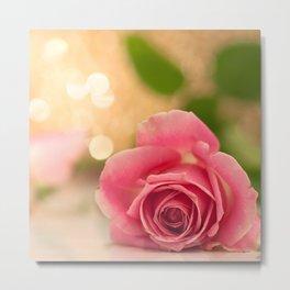 Pink Rose in soft focus Metal Print
