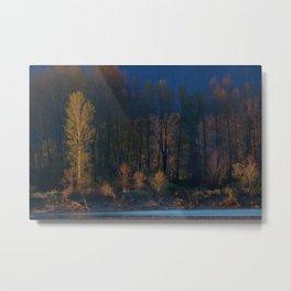 Trees Make a Scene Metal Print