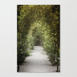 In to Canvas Print