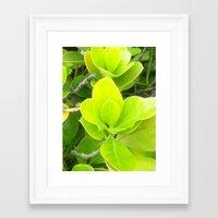 green lantern Framed Art Prints featuring Green Lantern by Françoise Reina