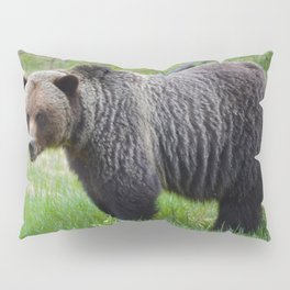 Grizzly encounter in Jasper National Park Pillow Sham
