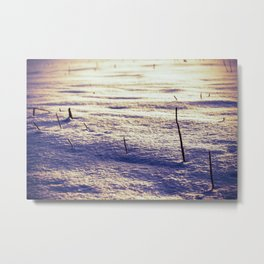 Agricultural Field Stubble in Freshly Fallen Snow Metal Print