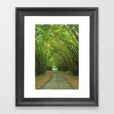 Bamboo Cathedral  Framed Art Print