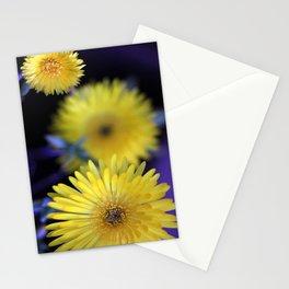 Nice Ice...Plant Stationery Cards