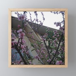 #320 More blossoms Framed Mini Art Print