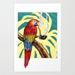 Smokin parrot .... where is my pipe ??? Art Print