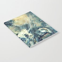 ALTERED Sharpest View of Orion Nebula Notebook