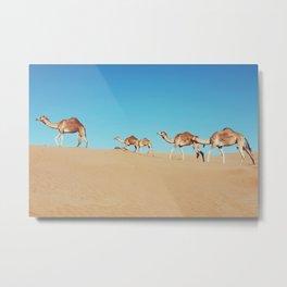 Camels of Oman Metal Print