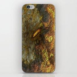 Bound in Fire iPhone Skin