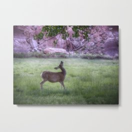 Deer at Capitol Reef Metal Print