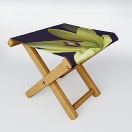 Asiatic Yellow Lily Folding Stool