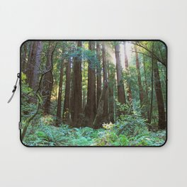 Muir Woods Laptop Sleeve
