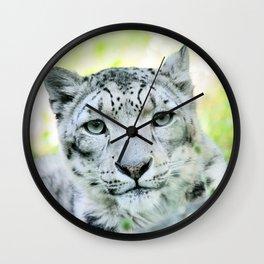 Snow leopard (Irbis)  Wall Clock