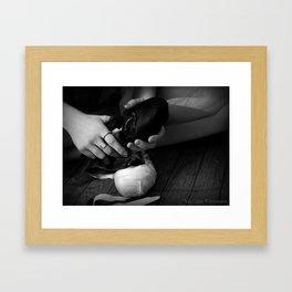 Ballet Slipper Framed Art Print