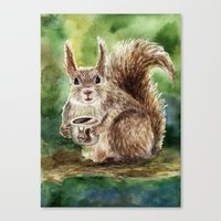 squirrel Canvas Prints featuring Squirrel by Anna Shell