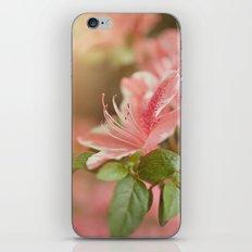 Spring's eruption iPhone & iPod Skin
