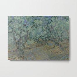 Olive Grove Metal Print