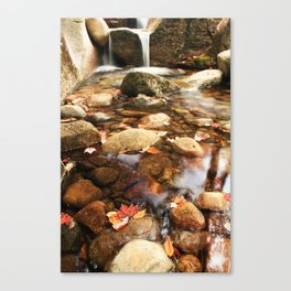 DIANAS BATHS Canvas Print