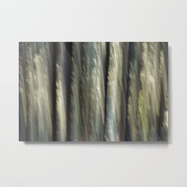 Forest Secrets Metal Print