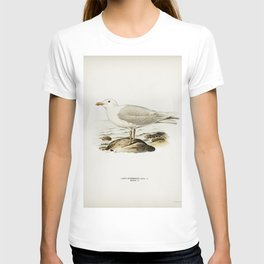 Glaucous gull  (Larus hyperboreus) illustrated by the von Wright brothers T-shirt