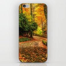 A Path through Autumn iPhone & iPod Skin