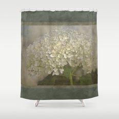 White Hydrangea Shower Curtain