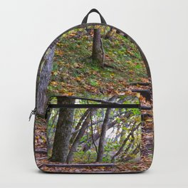 Stairway into the Woods Backpack