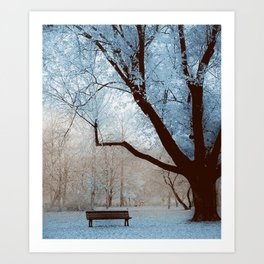 PASTEL GARDEN - 30118/1 Art Print