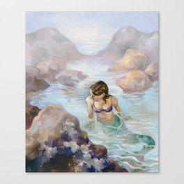The Lonely Tidal Pool Canvas Print