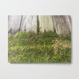 Moss on Wood Natural Art Metal Print