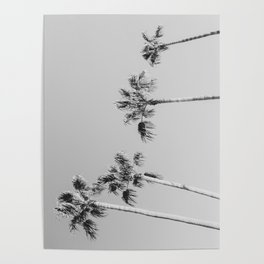 Black Palms // Monotone Gray Beach Photography Vintage Palm Tree Surfer Vibes Home Decor Poster