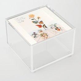 Salvador Dali Acrylic Box