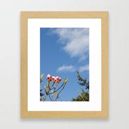 Sky flowers Framed Art Print