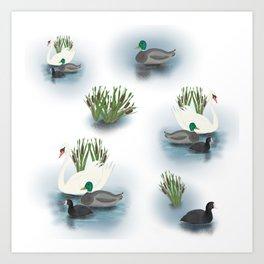 Best of friends water birds Art Print