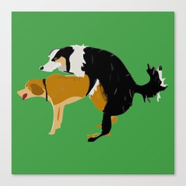 DOGS MATE SEX MAKE LOVE Canvas Print