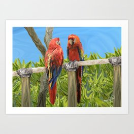 Scarlet Macaw Parrots Perching Art Print