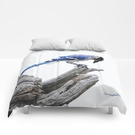 Blue Jay II Comforters