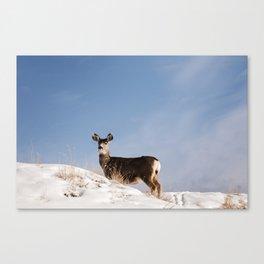 Deer Prancing Among  Snow Covered Hills Colored Wall Art Print Canvas Print