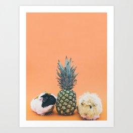 Hamster pineapple Art Print