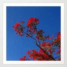 Rojo y Azul Art Print