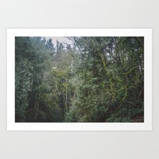 Northwest Art Print