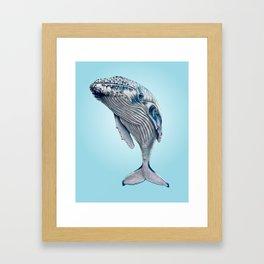 WHALE, WHALE, WHALE... Framed Art Print