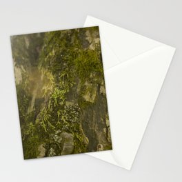 Mossy Tree with Lens Flare Stationery Cards