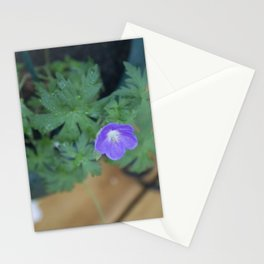 Purple Flower 2014 Stationery Cards