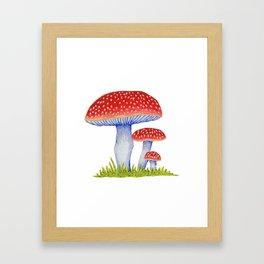 Woodland Toadstools Framed Art Print
