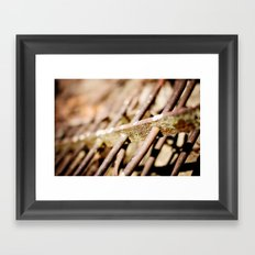 Iron Clad Framed Art Print