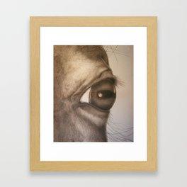 Directions 18 Framed Art Print