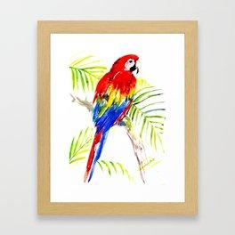 Scarlet Macaw, tropical bird, jungle Framed Art Print