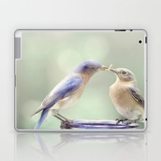 Spring Kiss Laptop & iPad Skin
