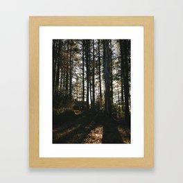Morning Magic Framed Art Print
